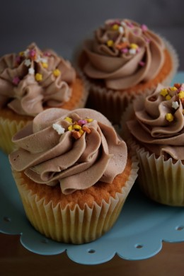 vanilla and chocolate cupcakes